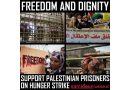 Führer der palästinensischen Gefangenenbewegung in den ersten Reihen der Hungerstreikenden