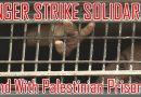 """400 palästinensische Gefangene nehmen am Hungerstreik teil, während der """"Kampf der Würde 2"""" in israelischen Gefängnissen weitergeht"""